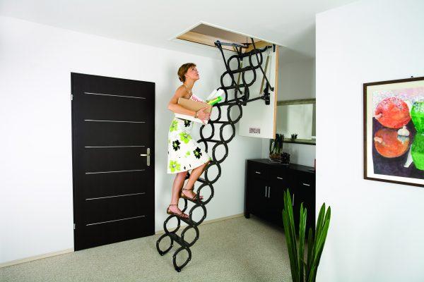 FAKRO attic ladder