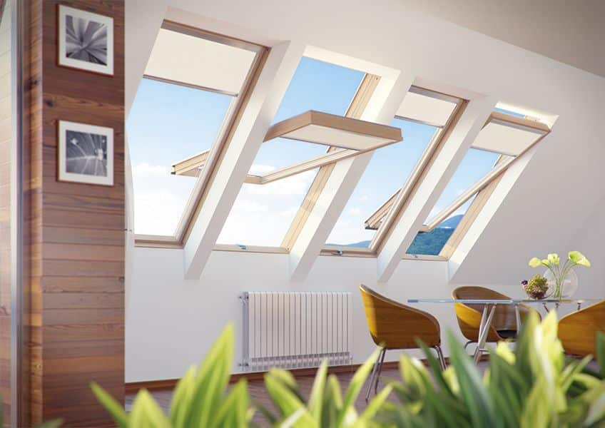 High Pivot Roof Windows